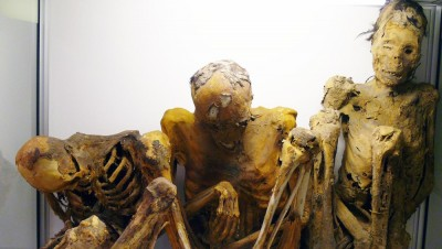These mummies may be sent from Norway back to Chile. PHOTO: Per Holck/University of Oslo