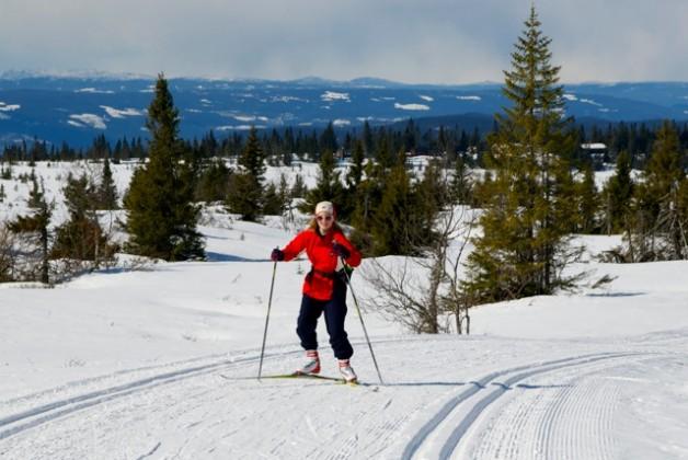 over finnmarksvidda på ski