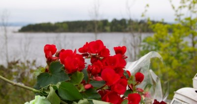 Sometimes roses just aren't enough to express pent-up emotions since July 22. PHOTO: Views and News