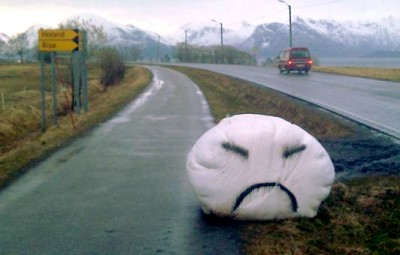 Another quieter protest along a highway in Nordland County. PHOTO: Norges Bondelag