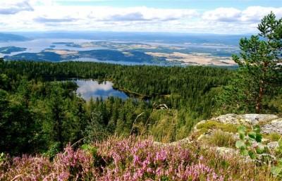 Rescue hopes rise for Norske Skog