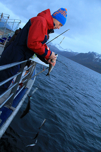 Oil Minister Ola Borten Moe, shown here fishing off Lofoten, claims he's listening to the concerns of the fishing industry and environmentalists. They're not so sure. PHOTO: Oil & Energy Ministry