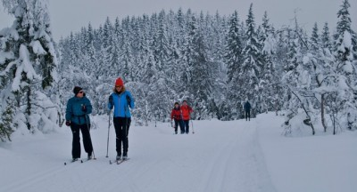 Many Norwegians, it seems, would rather be able to go skiing in Nordmarka instead of working abroad. PHOTO: newsinenglish.no