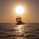Oscar sailed by 'Kon-Tiki,' too