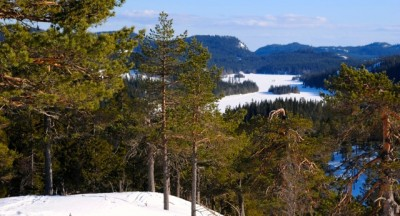 At first glance, it looks like fine spring conditions outdoors, like here in Krokskogen northwest of Oslo. But it's still cold out there, and the chilly temperatures are due to continue. PHOTO: newsinenglish.no