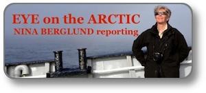 Arctic_vignette