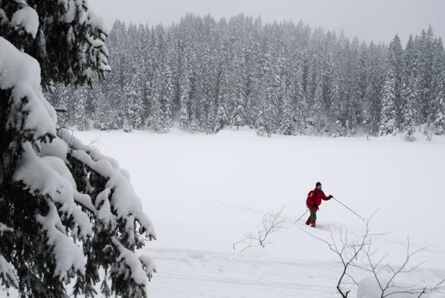 skiing, marka
