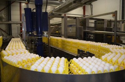 Nortura's egg-packing plant at Rakkestad is among those due to be hit by farmers' blockades on Thursday. The farmers own Nortura, which serves as their market regulator, setting production and prices in Norway. A dozen eggs in Norway currently costs between NOK 40 and 50 (USD 6.60 and 8.30) and the farmers are demanding higher income. PHOTO: Nortura