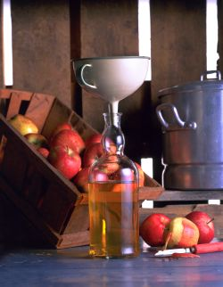 Norway's new conservative government also wants to make it easier for small-scale producers, like cider-makers on apple orchards, to sell their alcoholic products. PHOTO: Landbruks- or mat departementet/frukt.no
