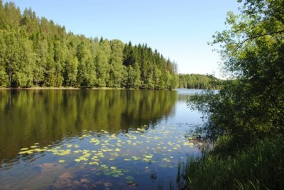 Clear blue skies and warm temperatures characterized much of June in Norway, like here at a tranquil lake in Oslo's eastern forest known as Østmarka just last weekend. Temperatures have since fallen. PHOTO: newsinenglish.no