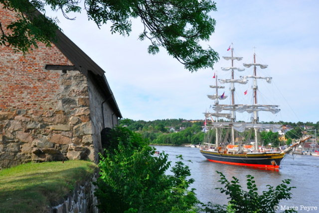 Tall Ships Races in Fredrikstad