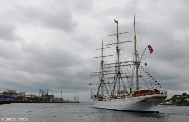 Tall Ship Races in Fredrikstad