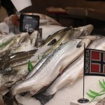 China restricts salmon imports