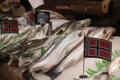 China is following Russia in banning imports of Norwegian salmon, meaning Norway's huge salmon industry needs to find new export markets for its fish. PHOTO: Nærings- og fiskeridepartmentet