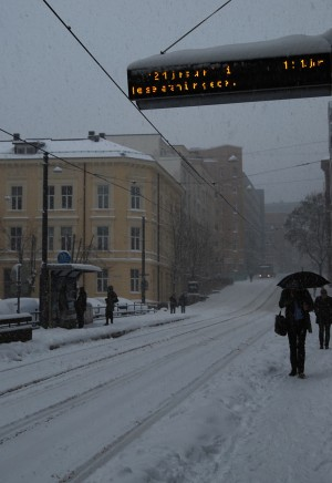 The blizzard also disrupted Oslo's tram lines, and the city turned strangely quiet, blanketed in snow and with most modes of transport parked. PHOTO: newsinenglish.no
