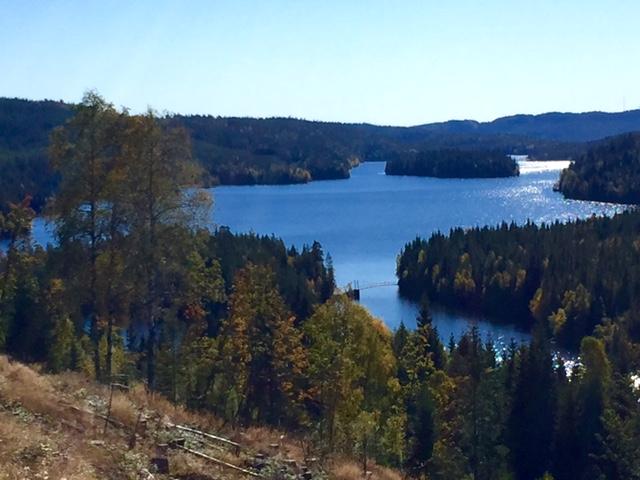 Hakkloa, marka, autumn,