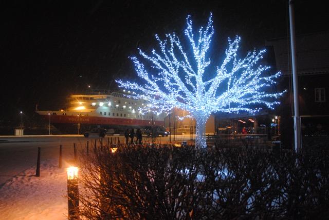 Tromsø, Tromsø palm, Hurtigrutens Polarlys