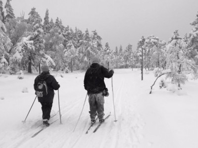 This was the scene on Sunday afternoon near Skjennungen in Nordmarka. These ski trails lie within the city limits of Oslo, and were crowded in several areas during the weekend after enough snow finally fell. PHOTO: newsinenglish.no