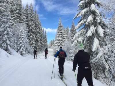 Fresh snow followed by sunshine and blue skies arrived as if ordered in the Oslo area, just as the traditional winter holiday week was beginning. Skiers quickly hit the trails, here from Sollihøgda on Sunday, with many also able to ski all week. PHOTO: newsinenglish.no