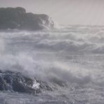 Norwegians rode out the mighty storm