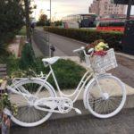 Cyclists still afraid, but also 'egoistic'
