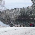 Frosty forests show winter is coming